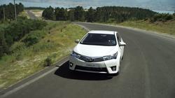 Road Of Life - Toyota
