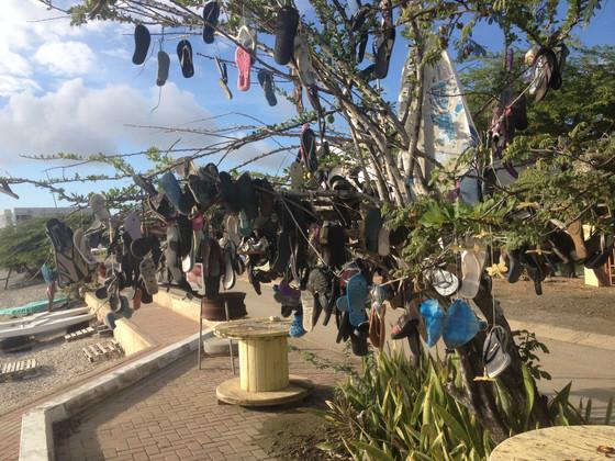 Jandal, Flip Flop or Sandal Tree