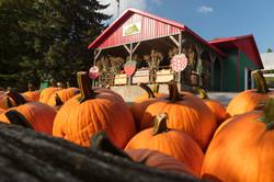 kiosque d'automne