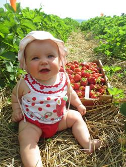 alice fraise