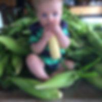 aux fruits de la colline -maïs-
