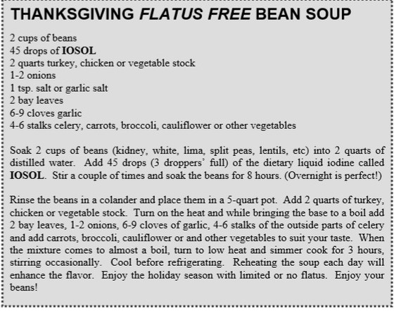 HOLIDAY WINTER SOUP  SURVIVAL GUIDE