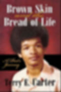 Brown Skin- final cover front.JPG