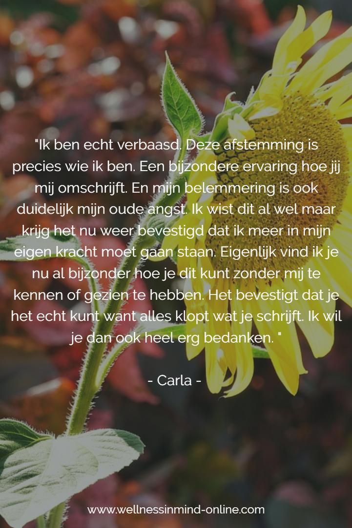 Testimonial Carla Vrielink 20161218.png