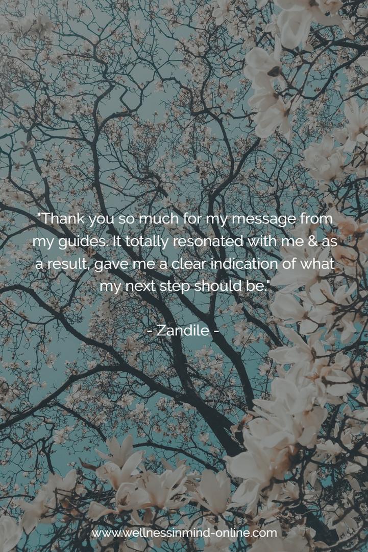 Testimonial Zandile Mazwayi 20180521.png