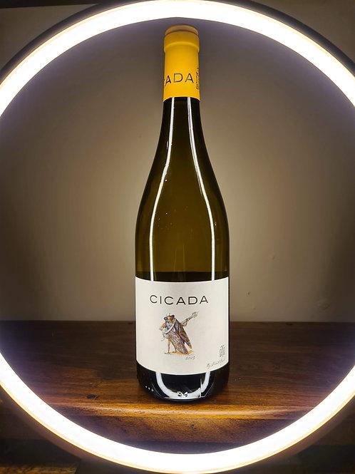 Cicada Vin Blanc, France
