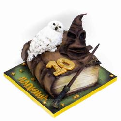 торт книга с совой