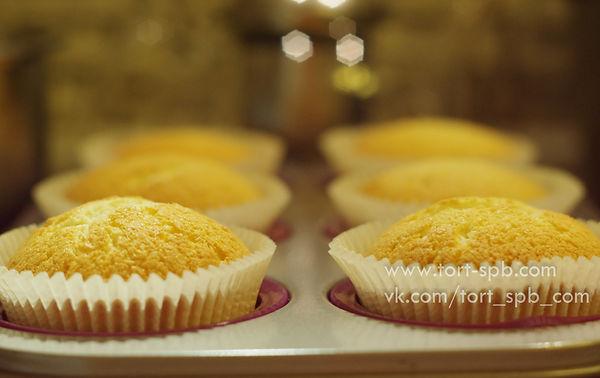 Готовые кексы (капкейки) после выпекания