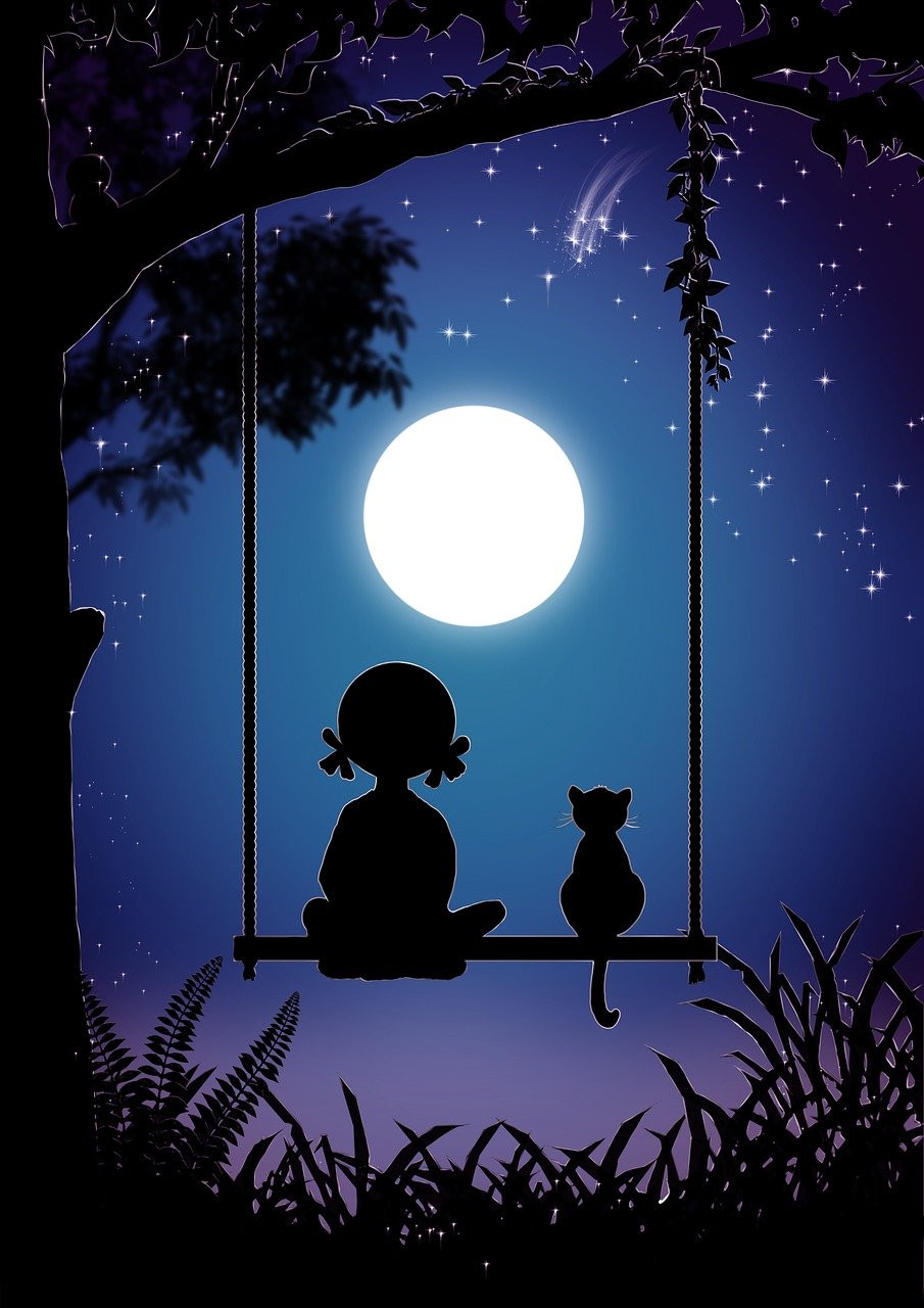 Girl and cat on swing, watching the moon. The Poetry of Life.