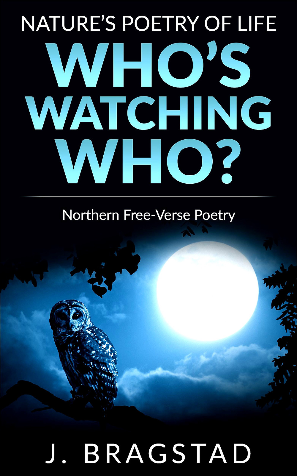 Nature's Poetry of Life, book, owl and moon, Northern Free-Verse Poetry