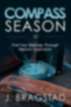 Adult Inspirationa Writing: Compass Season book cover.