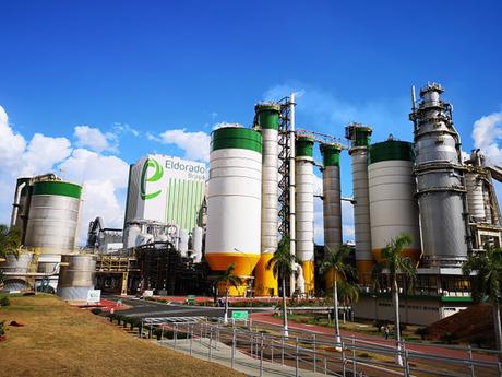Eldorado dá sinais do forte crescimento no setor de base florestal brasileiro