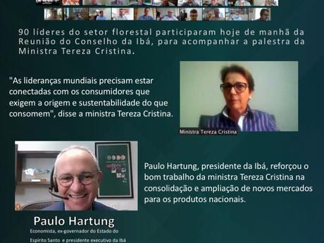 """Ministra Tereza Cristina afirma que setor de base florestal é """"case de sucesso em todo o Brasil"""""""