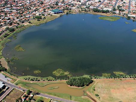 Três Lagoas e a indústria do eucalipto