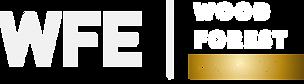 logo-wfe.png