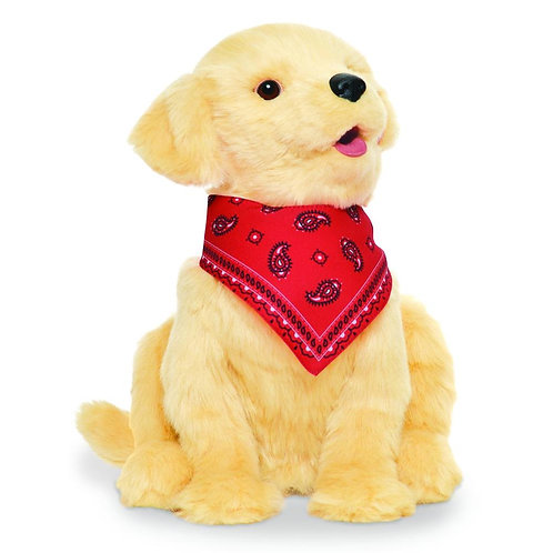 COMPANION PET GOLDEN PUP