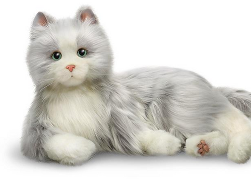 COMPANION PET CAT GREY