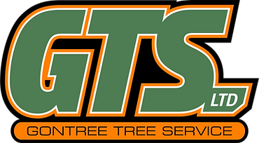 GTS with Orange and Green.png