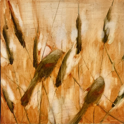 Red wings and cat tails