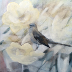 magnolia song