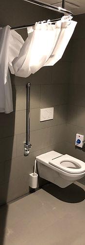 catrina-hostel-room-handicap-toilet.JPG