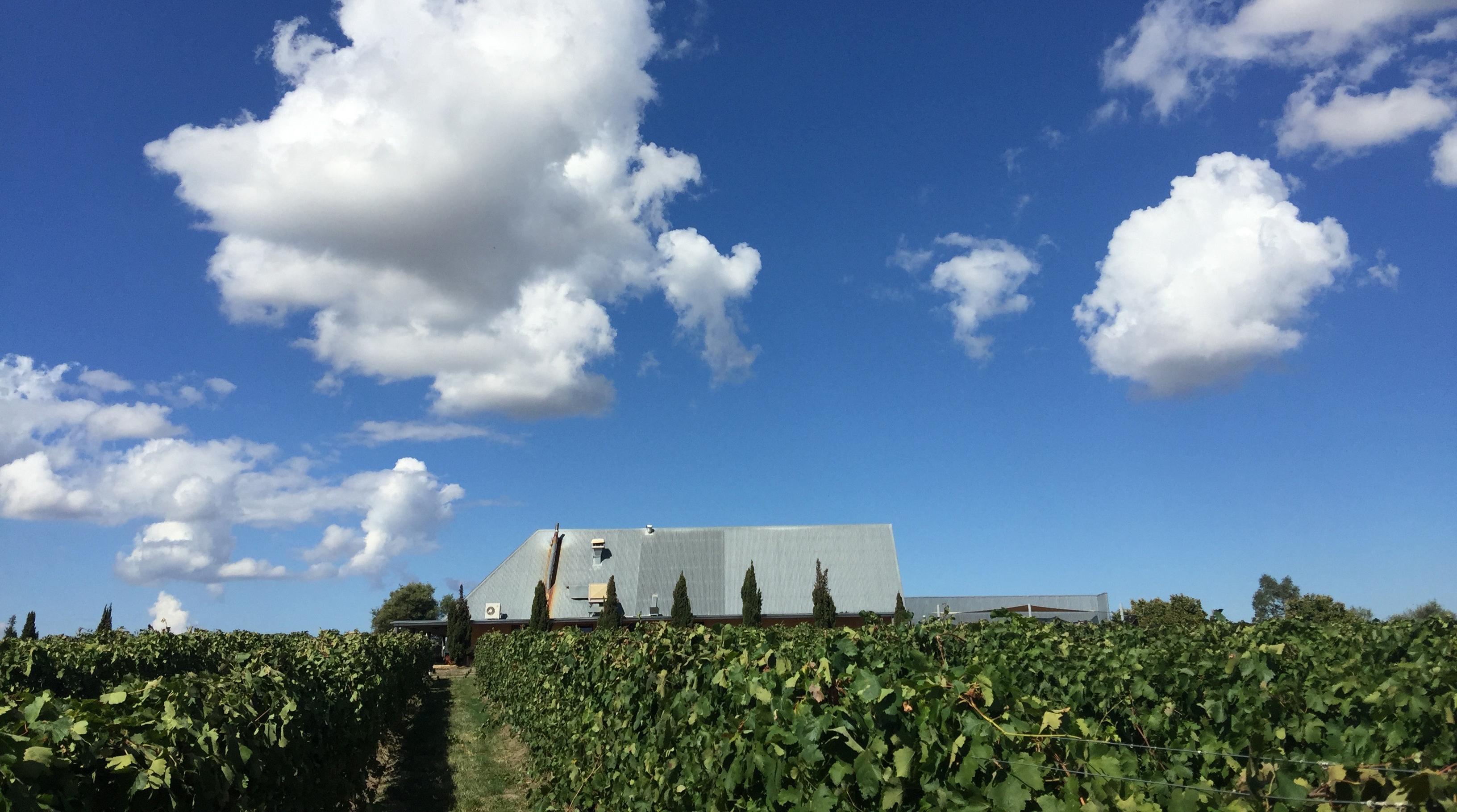 castagna homestead
