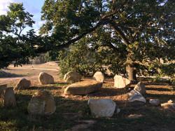 Domenica Stone Henge