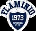 FLAMINIO SPORTING CLUB, Centro affiliato aurelia nuoto, piscina comunale, corsi nuoto bambini, corsi nuoto adulti, nuoto, sincronizzato, salvamento, piscina roma