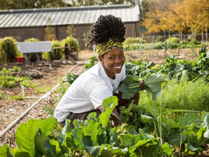 The Ultimate List of Black Owned Farms & Food Gardens