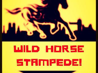 Wild Horse Stampede! News!