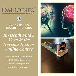 In-Depth Study_ Yoga & the Nervous Syste
