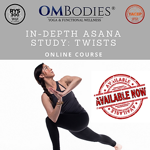 advanced yoga teacher training.png