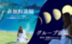 ドルフィンラブ・変容の21日間遠隔ドルフィンヒーリング、新月の一斉遠隔ドルフィン ヒーリング・エナジートランスミット