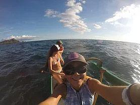 ドルフィンスイムボートへのユリカ同行サービス  (オアフ島、ハワイ島)