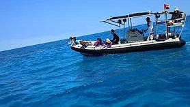 ドルフィンスイムボート