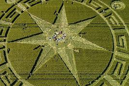 crop-circles-united-kingdom33.jpg