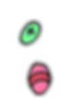 eggs-4.png