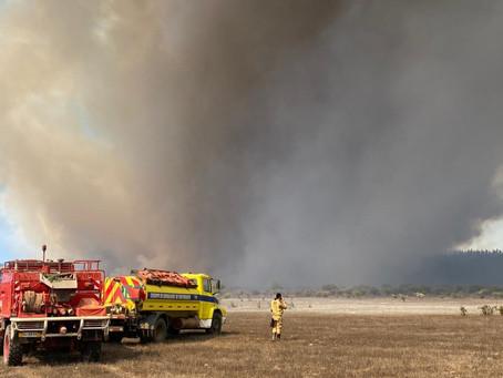 Decretan Alerta Roja en Valparaíso por incendio forestal en reserva Lago Peñuelas