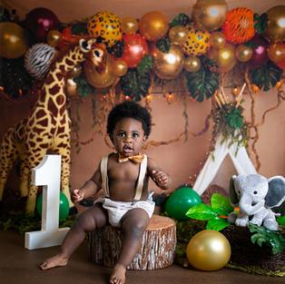 Boy Jungle