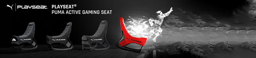 PUMA_playseat_banner.jpg