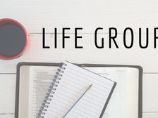 Young Adult Life Group