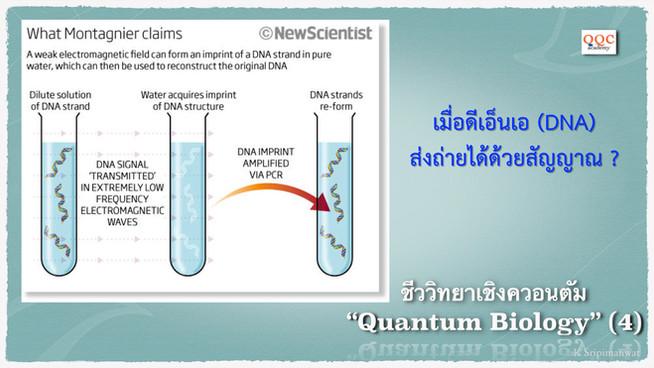 Quantum Biology (4) - เมื่อปู่โนเบลโดนสอบ (Luc Montagnier)