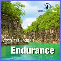 Endurance-Cover.JPG