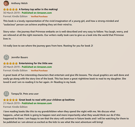 amazonreviews1.png