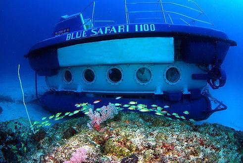 Heiraten in der Submarine