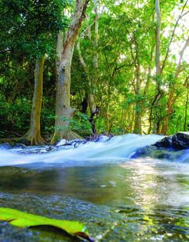 river Mauritius