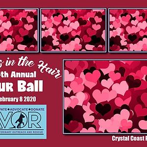 4th Annual Fur Ball