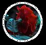_FINAL_New_Logo_JUNEv3.png