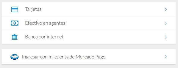 pagos web.jpg