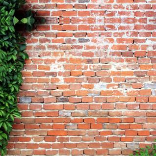 Red Brick Effect
